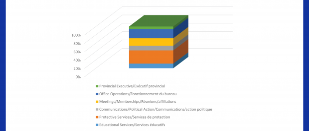 Image of a pie chart of the audit 2018 spending breakdown