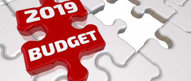 puzzle piece that says 2019 budget