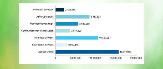 Bar chart of audit figures